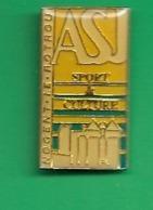 1 PIN'S . 28 NOGENT LE ROTROU. A.S.J. SPORT & CULTURE. - Villes