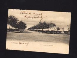 17873 - Marsala - Viale Centrale Villa Garibaldi (Trapani) F - Marsala