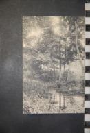 CP  93  MONTFERMEIL , étang Dans La Forêt , Vierge - Montfermeil
