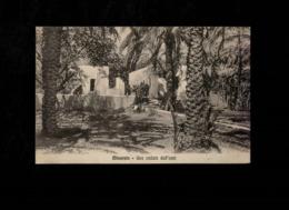 Cartolina Timbro Residenza Di Taorga - Misurata Una Veduta Dell'oasi - Militari