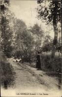 Cp La Nivelle Loiret, Les Sentes - Autres Communes