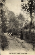 Cp La Nivelle Loiret, Les Sentes - Altri Comuni