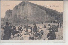 76  - YPORT -   Falaise D'Amont - Yport