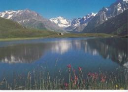 Les Alpes - Lac Au Printemps - France