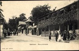 Cp Robinson Hauts De Seine, Rue Principale - Otros Municipios