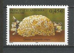 ANDORRE ANDORRA 2003 N°584 NEUF** NMH - Unused Stamps