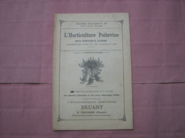 Catalogue 1896 N°229 L'Horticulture Poitevine  Ets. Bruant  Poitiers  TBE - B. Piante Fiorite & Fiori