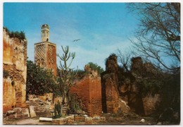 RABAT, Ruins Of Chellah, Unused Postcard [23587] - Rabat