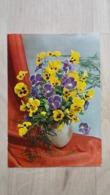 Ansichtskarte - Blumen - Stiefmütterchen - Blumen