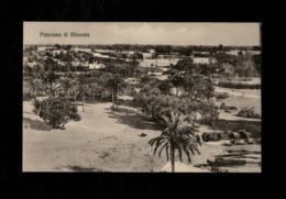 Cartolina Posta Militare Corpo Di Spedizione In Tripolitania - Panorama Di Misurata - Militari