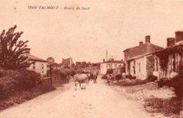Talmont : Route De Jard - Talmont Saint Hilaire