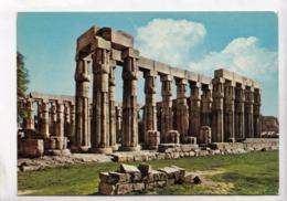 Egypt, Luxor, Amon Temple, Unused Postcard [23594] - Luxor