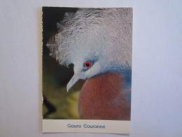 01 Ain Villars Les Dombes Parc Ornithologique Oiseau Animaux Goura Couronné - Villars-les-Dombes