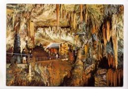 Postojnska Jama, Cave - Grotte, Slovenija, Unused Postcard [23610] - Slovenia