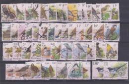 België Vogels Kleine Verzameling G, Mooi Lot K982 - Francobolli