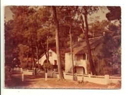 44 - QUIMIAC / BOIS DE LANSERIA - Other Municipalities