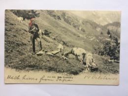 SWITZERLAND - Pres Champery - J.J. 3101 - 1909 - VS Valais