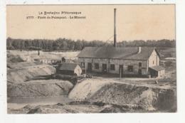 FORET DE PAIMPONT - LE MINERAI - 35 - Paimpont