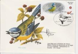 BUZIN.  MESANGE BLEUE - 1985-.. Pájaros (Buzin)