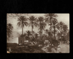 Cartolina Libia Tomba Di Marabutto - Libia