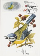 BUZIN.  MESANGE BLEUE - 1985-.. Oiseaux (Buzin)