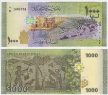 Syria NEW - 1000 1.000 Pounds 2013 - UNC - Siria