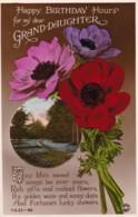 AN46 Greetings - Granddaughter's Birthday - Flowers, Park - Birthday