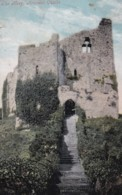 AP02 The Keep, Arundel Castle - 1904 Postcard - Arundel