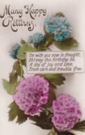 AS94 Greetings - Many Happy Returns - Hydrangeas - Birthday