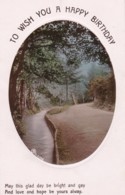 AS94 Greetings - To Wish You A Happy Birthday - Woodland With Stream - RPPC - Birthday