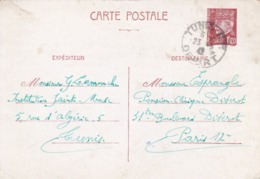 8 Entiers Postaux Iris Et Petain Envoyés De TUNISIE ,scan Recto Et Verso - Postzegels