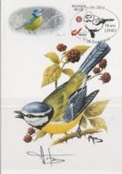 BUZIN.MESANGE BLEUE - 1985-.. Pájaros (Buzin)