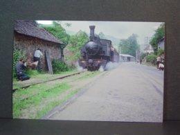 POC Saint Chamant Locomotive à Vapeur N°104 Le Long De La Nationale 120 En Juin 1964 Tirage De La Photo En 2006 - Trains