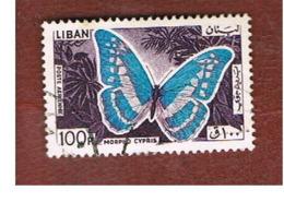 LIBANO (LEBANON) -  SG 879  - 1965 BUTTERFLIES: MORPHO CYPRIS  - USED ° - Libano