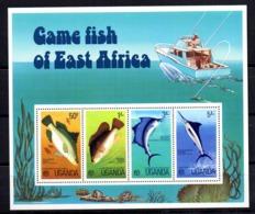 Hb-3 Uganda - Fische