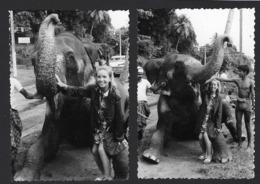 OLIFANT * ELEPHANT * INDIE * INDIA * MET JONGE DAME * AVEC JEUNE FILLE * 2 X * 10 X 7 CM - Photos