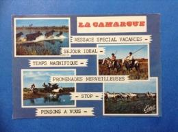 1975 CARTOLINA POST CARD LA CAMARGUE PASSAGE DE TAUREAUX GARDIANS POURSUITE MANADE - France