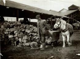 COAL STRIKE DERBYSHIRE PONIES PIT  21*16cm MINERIA, MINIERE, MIJNBOUW, BERGBAU Fonds Victor FORBIN (1864-1947) - Profesiones