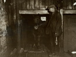 PIT PONY   21*16cm MINERIA, MINIERE, MIJNBOUW, BERGBAU Fonds Victor FORBIN (1864-1947) - Profesiones