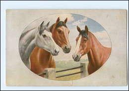 Y14008/ Pferde Schöne AK 1915 - Paarden