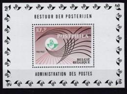 Belgie COB** BL 44 - Blocks & Sheetlets 1924-1960