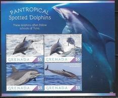 GRENADA, 2019, MNH,MARINE LIFE,DOLPHINS,  SHEETLET - Delfine