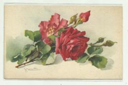 ROSE ILLUSTRATORE BONELLI - NV  FP - Künstlerkarten