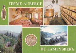 METZERAL                           Ferme Auberge Du Lameysberg - Frankreich