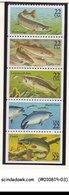 UNITED STATES USA - 1986 FISH / MARINE LIFE - SE-TENANT 5V STRIP MNH - United States