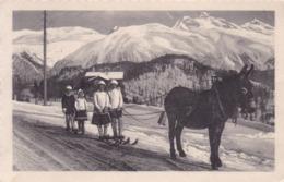 Alpen * Skifahrer, Sport, Esel, Gebirge * Schweiz * AK1221 - Suisse