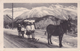 Alpen * Skifahrer, Sport, Esel, Gebirge * Schweiz * AK1221 - Non Classés