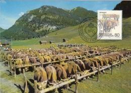 LIECHTENSTEIN Maximum Card 973 - Farm