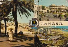 AK Tanger - Avenue D'Espagne Et Armoiries De La Ville - 1975 (44016) - Tanger