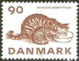 PETS DOMESTIC ANIMALS CAT KATZE GATTO GATO CHAT - DENMARK DANMARK DÄNEMARK 1975 MNH MI 606 Slania - Farm